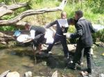 Bloukrans River Monitoring Project