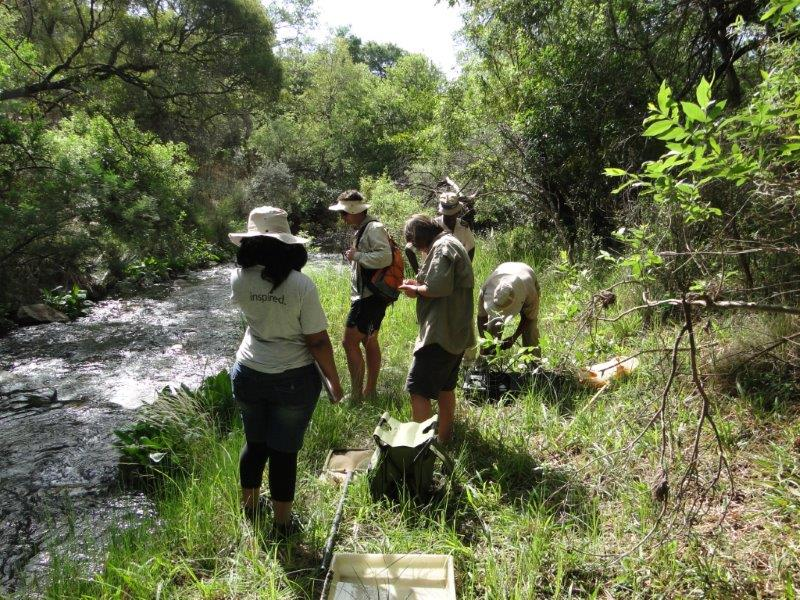 Students are inspired to study freshwater ecosystems under experienced scientists