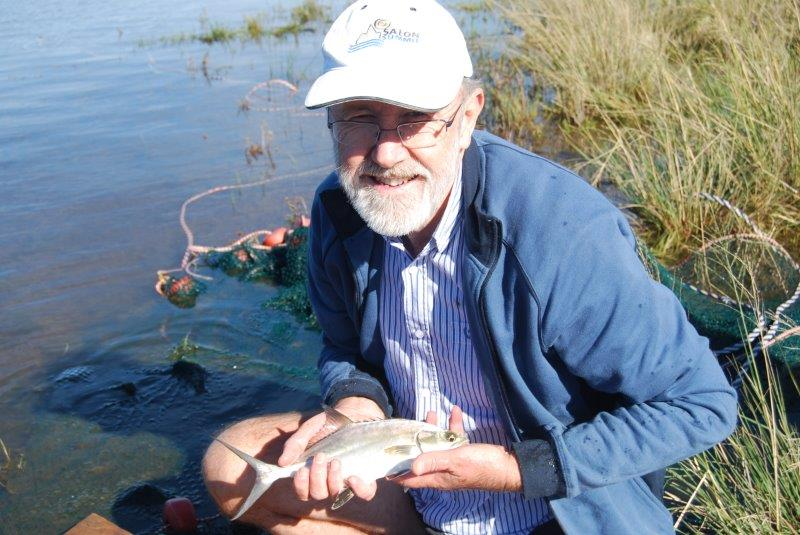 Fishs of Southern African Estuaries