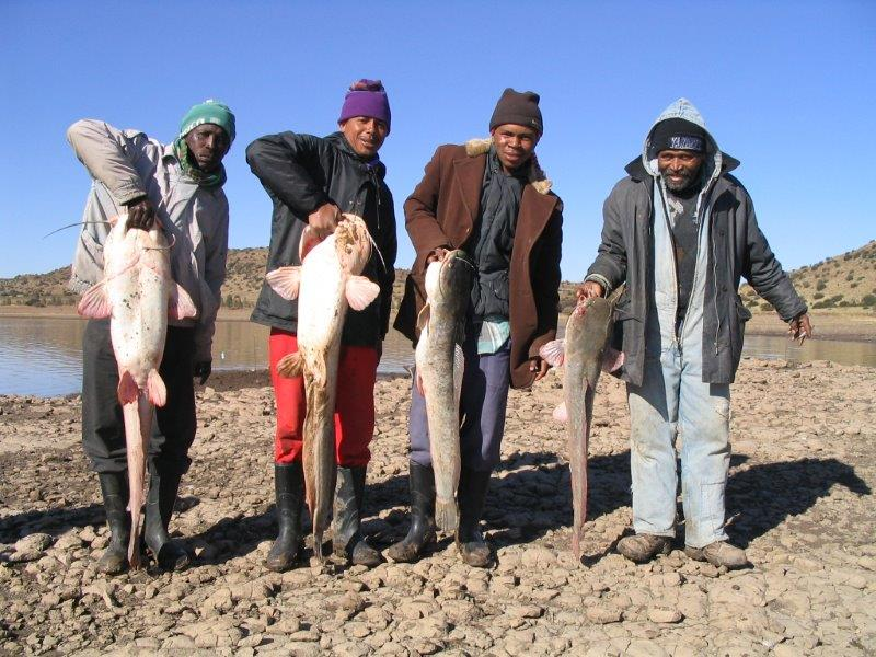 Gariep - catfish fisheries can contribute to rural economies