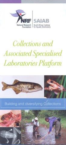 Collections & Labs
